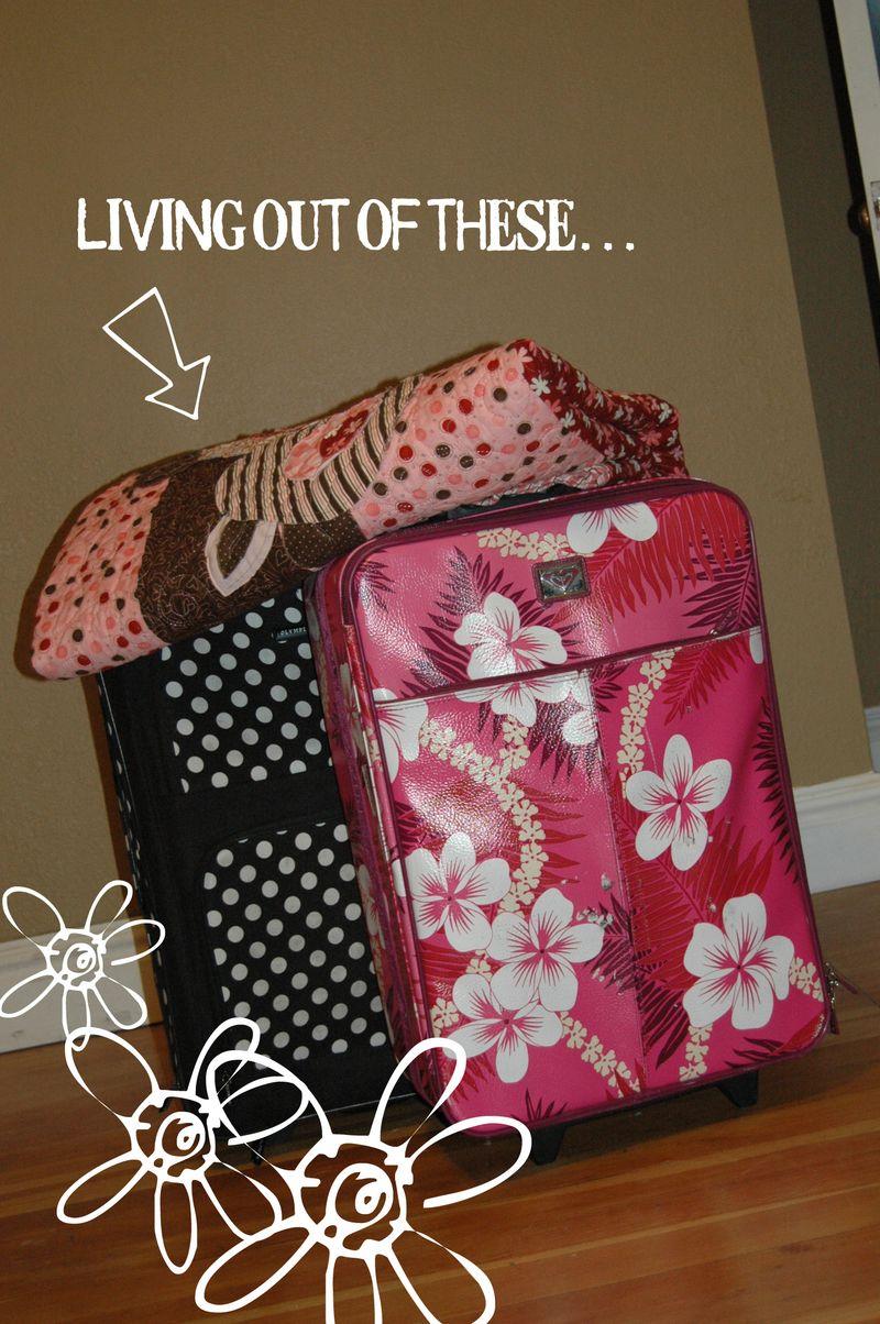 DSC_7375_suitcases