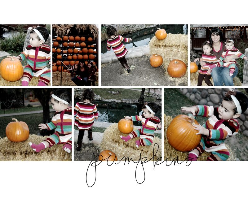 Pumpkins collage